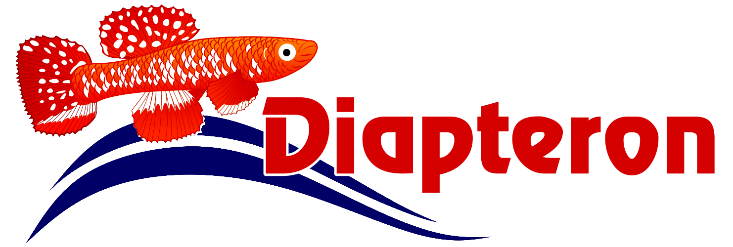 Diapteron Shop
