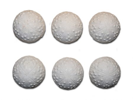 Special Formula Slow-Release 5 cm Food Tablets
