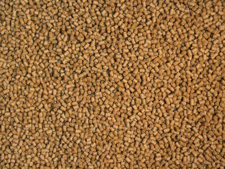 Endler Boost Granules