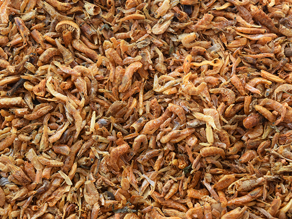 Diapteron UK Sun-Dried River Shrimps